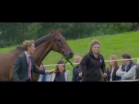 Paul Nicholls Open Day 2016 - PART 1