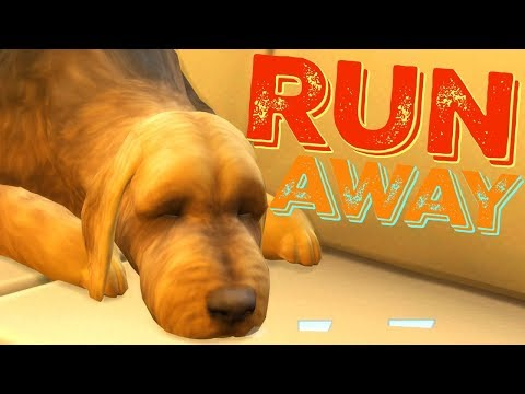 ADOPTING A STRAY - The Sims 4 Runaway Teen Challenge | Episode 11 thumbnail