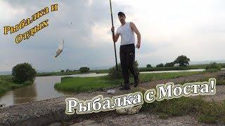 Рыбалка на Поплавочную Удочку в Приморье на Речке Суйфун (Пачихеза). Ловля Рыбы на Удочку.