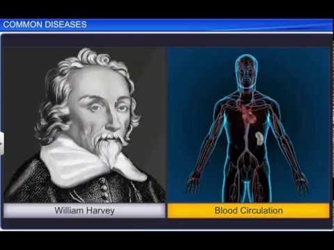 CBSE Class 12 Biology, Human Health And Disease – 1, Common Diseases