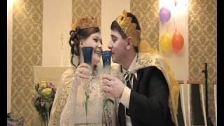 Тамада на свадьбу в спб недорого видеооператор