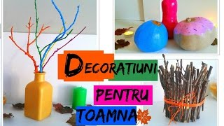 DIY Decoratiuni De Toamna - Idei ieftine si spectaculoase