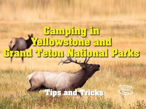 Yellowstone Camping - Campgrounds and RV Parks