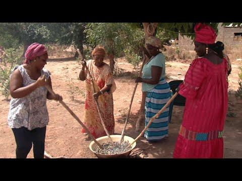 Sénégal : en Casamance, l'espoir d'une nouvelle ère