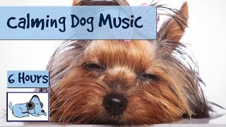Over 6 Hours Of Calming Dog Music. For New Puppies With Separation Anxiety!