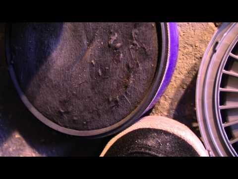 How To Wash Dyson Dc07 Filters