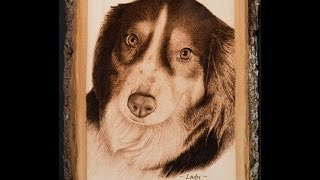 Dog Memorial Pyrography Portrait (time Lapse - 256x Speed)