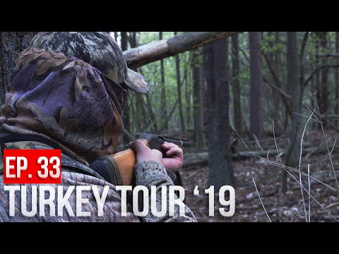 TAG TEAM TURKEY HUNTING - Last Day In NEW YORK!