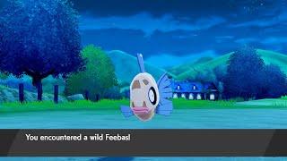 How to Catch Feebas - Pokémon Sword & Shield