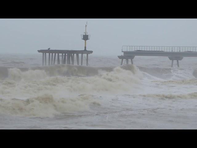 Desolació al litoral de Badalona - Gener 2020