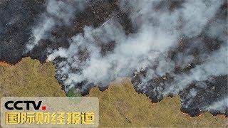 [国际财经报道]关注亚马孙雨林大火 亚马孙雨林大火持续燃烧 巴西多地烟雾笼罩| CCTV财经