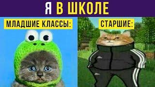 Приколы с котами. Котик подрос) | Мемозг #312