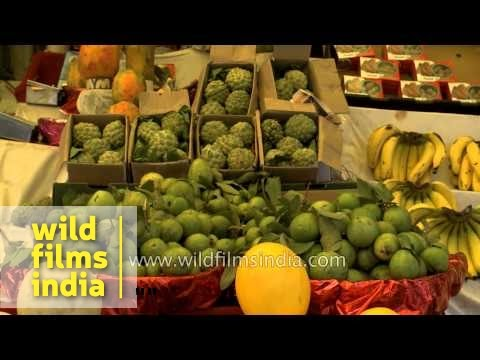 Fresh fruits for sale in Indore market