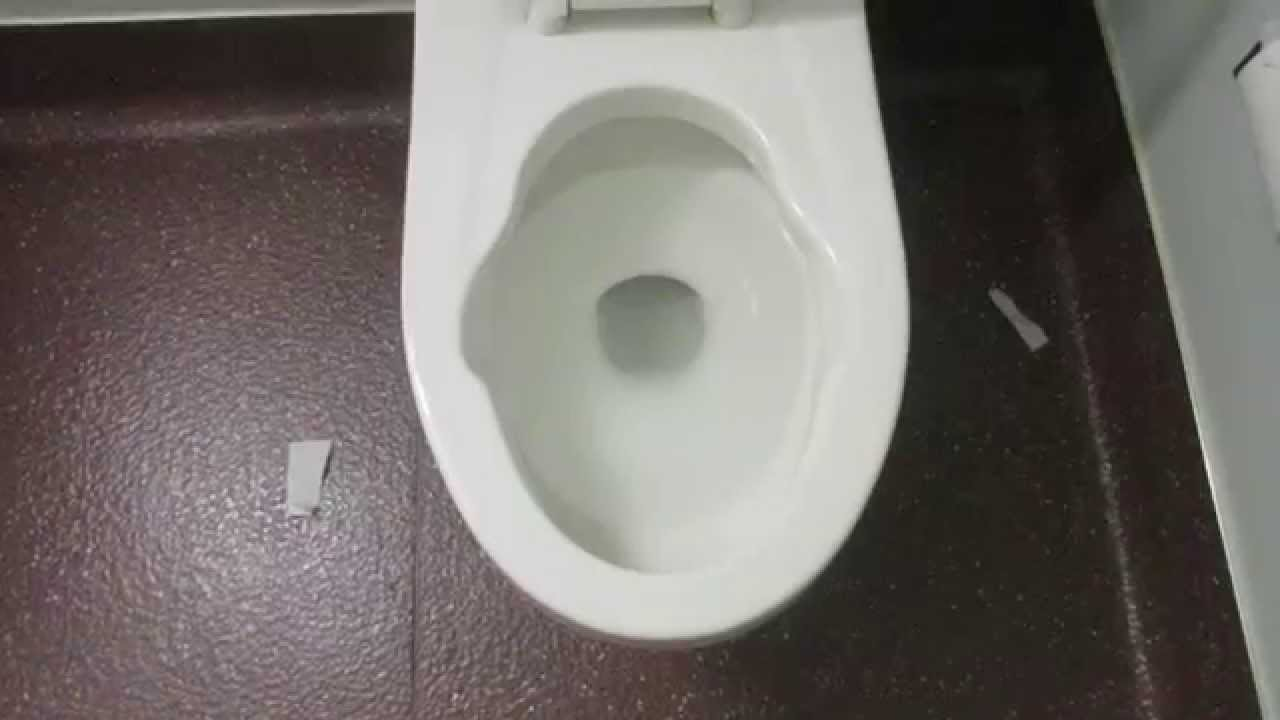 1983 American Standard Afwall Toilet With Bedpan Lugs