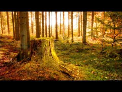 Johan Gielen - Dreamchild (Shah & Del Mar Remix )