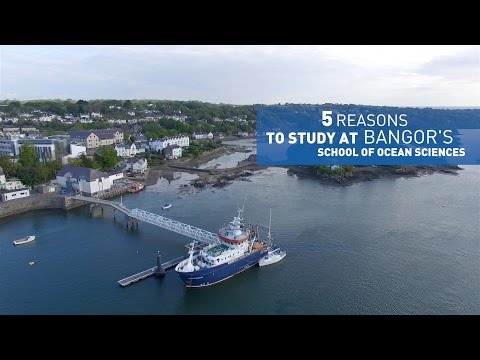 5 reasons to study at Ocean Sciences