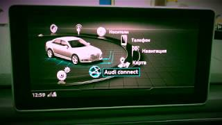 Audi Connect & Google Earth & Traffic Online