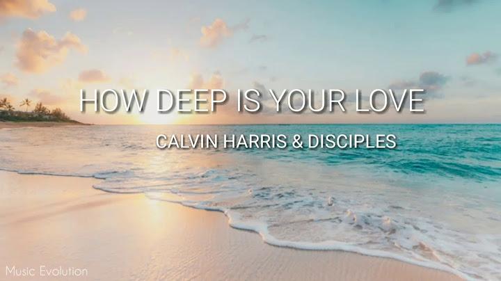 calvin harris  disciples  how deep is your love lyrics