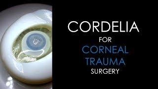 BIONIKO CORDELIA Model for TRAUMA - Corneal Laceration Repair