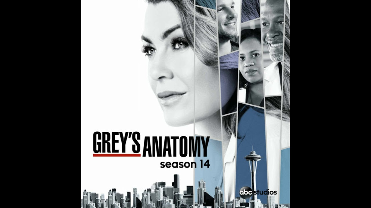 GREY\'S ANATOMY SE14 EP15 I DON\'T WANT TO LOSE YOU by. LUCA FOGALE ...