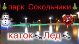 на катке «Лёд» парка «Сокольники»