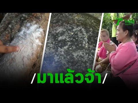 ส่องเลขเด็ด | 14-02-63 | ข่าวเช้าไทยรัฐ เสาร์-อาทิตย์