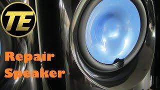 Repair Speaker - JVC NX-D5