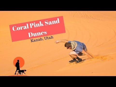 Coral Pink Sand Dunes, redneck skiing - Kanab Utah | Curious
