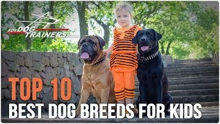 Top 10 Best Dog Breeds for Kids - ForDogTrainers Top 10 Chart �