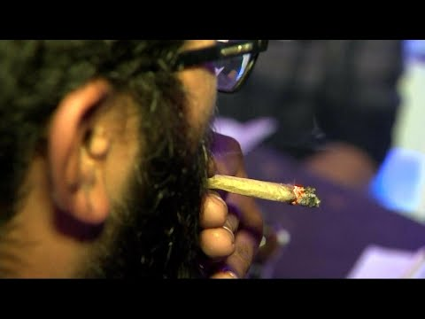 Pot Smokers Get High in Front of Cops, on Purpose