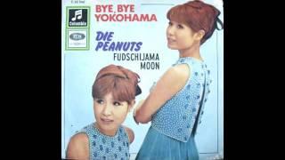 DIE PEANUTS - FUDSCHIJAMA MOON