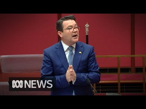 Same-sex marriage: Senator tells Parliament