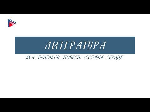 """9 класс - Литература - М.А. Булгаков. Повесть """"Собачье сердце"""""""
