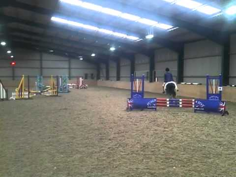BSJA club - Gypsy cob Show jumping