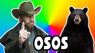 Los OSOS De Chuck Norris! - FAR CRY 3