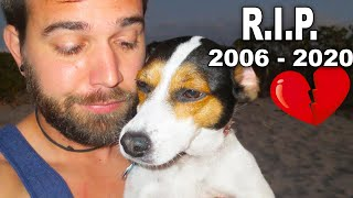 Rest In Peace, the weirdest dog ever! We will miss you! ❤️
