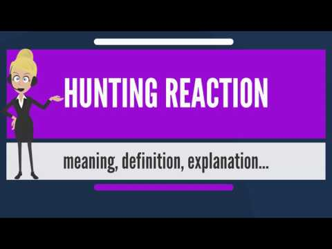 What Is HUNTING REACTION? What Does HUNTING REACTION Mean? HUNTING REACTION Meaning