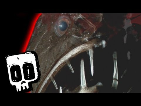 Deadliest Deep Ocean Predators #10 | Earth Unplugged