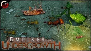 BUG FIGHTING BATTLE ARENA! M๐st Epic Insect Fight Scenes   Empires of the Undergrowth Gameplay