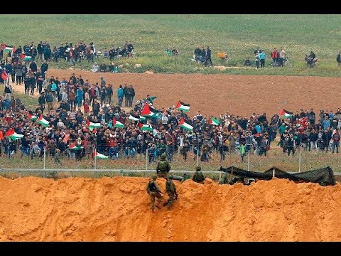 Hold Israel Accountable for Gaza Land Day Killings