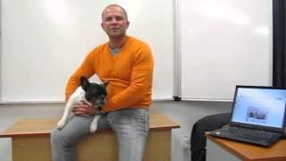 Csaba doktor szeret oktatni