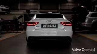 SO LOUD !! Audi S5 with Fi Exhaust sound like Race car !!!