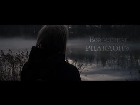 pharaoh клипы смотреть