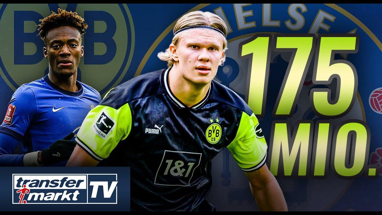 Download Chelsea bietet 175 Mio. € für Haaland – Abraham im Gegenzug zum BVB? | TRANSFERMARKT