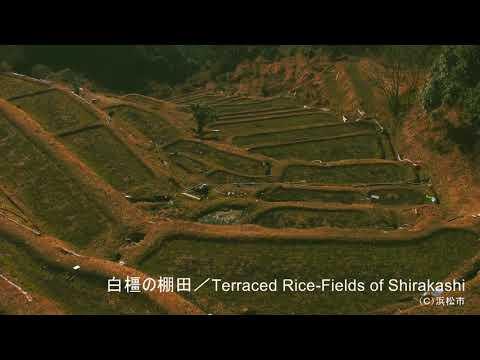 白橿の棚田/Terraced Rice-Fields of Shirakashi  ©️浜松市