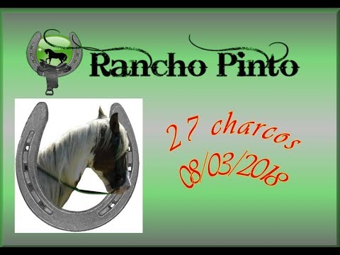 Rancho Pinto 08 03 2018 27 Charcos video
