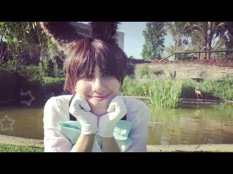 PON PON Bunny - Levi X Eren - Special Easter Chibi Story - SNK CMV