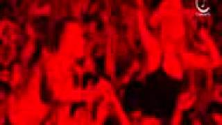 iConcerts   David Guetta   When Love Takes Over (live).3gp