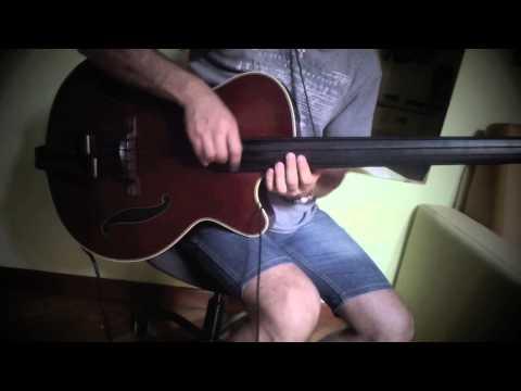 Galli Strings Black Nylon on a Takamine TB 10 Bass