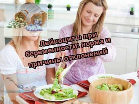 Норма лейкоцитов в моче при беременности